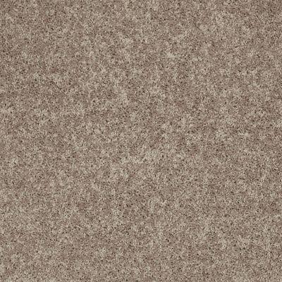 Shaw Floors Shaw Design Center Royal Portrush III 12′ River Slate 00720_5C613