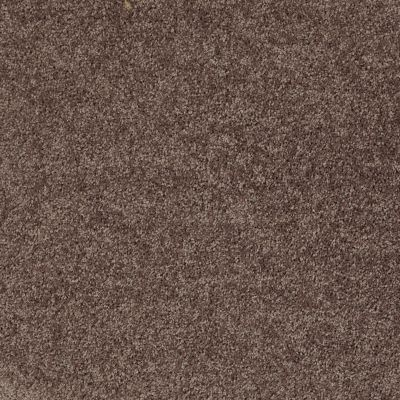 Shaw Floors Shaw Design Center Royal Portrush III 15′ Molasses 00710_5C614