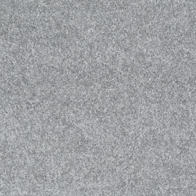 Shaw Floors Shaw Design Center Wild Pitch Silhouette 00500_5C633