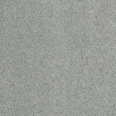 Shaw Floors Shaw Design Center Best Basics Drizzle 00414_5C728