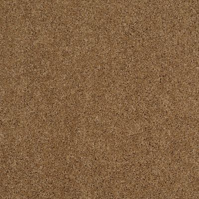 Shaw Floors Shaw Design Center Best Basics Leather Bound 00702_5C728