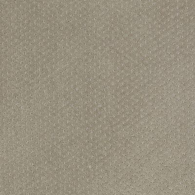 Shaw Floors Shaw Design Center Take Off Gray Flannel 00511_5C732
