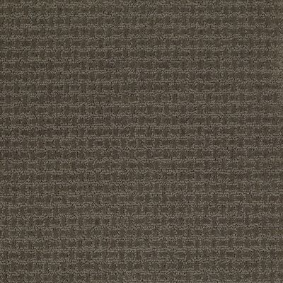Shaw Floors Shaw Design Center Propel Graphite 00712_5C733