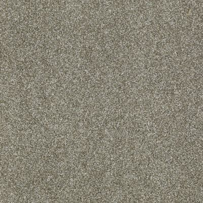 Shaw Floors Shaw Design Center Sun Drenched Silver Sage 00310_5C740