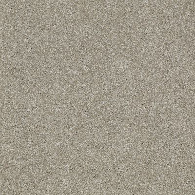 Shaw Floors Shaw Design Center Sun Drenched Gray Flannel 00511_5C740