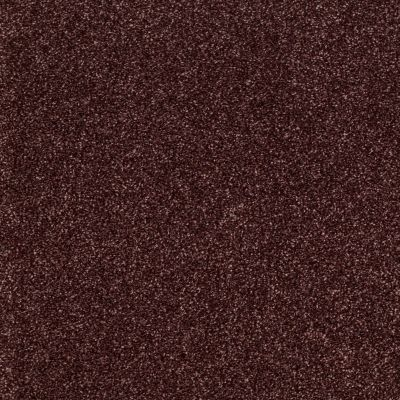 Shaw Floors Shaw Design Center Sun Drenched Berry 00810_5C740