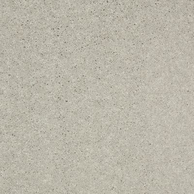 Shaw Floors Shaw Design Center Beautifully Simple II 12 Sheer Silver 00500_5C747