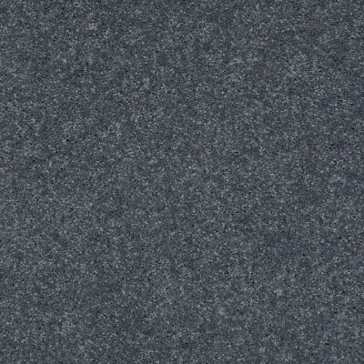 Shaw Floors Shaw Design Center Beautifully Simple II 15′ Pacific 00401_5C752