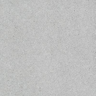 Shaw Floors Shaw Design Center Beautifully Simple II 15′ Sheer Silver 00500_5C752