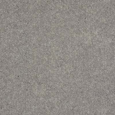 Shaw Floors Shaw Design Center Beautifully Simple II 15′ Nickel 00502_5C752