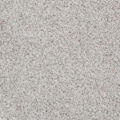 Shaw Floors Shaw Design Center Style Standard I Snowcap 00179_5C771