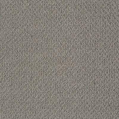 Shaw Floors Shaw Design Center True Reflections Loop Grey Flannel 00501_5C782