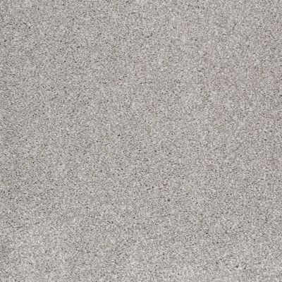 Shaw Floors Shaw Design Center Opportunity Knocks Frosted Ice 00510_5C788