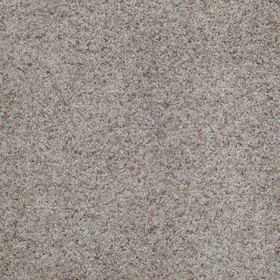 Shaw Floors Shaw Design Center Moment Of Truth Birch Bark 00550_5C789