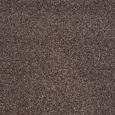 Shaw Floors Shaw Design Center Fantastical Fudge Ripple 00717_5C790