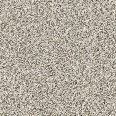Shaw Floors Value Collections Cabana Bay (b) Net Seashell 00151_5E001
