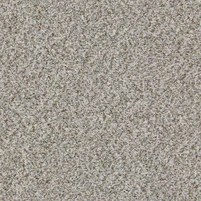 Shaw Floors Value Collections Cabana Bay (b) Net Stone 00550_5E001