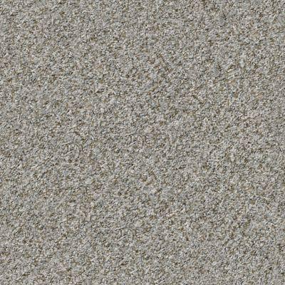 Shaw Floors Value Collections Cabana Bay (b) Net Sierra Mist 00555_5E001