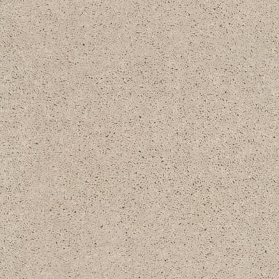 Shaw Floors Value Collections Cabana Bay Solid Net Sugar Cookie 00122_5E002