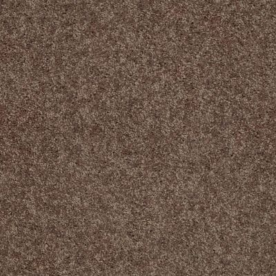 Shaw Floors Value Collections Cabana Bay Solid Net Cattail 00702_5E002