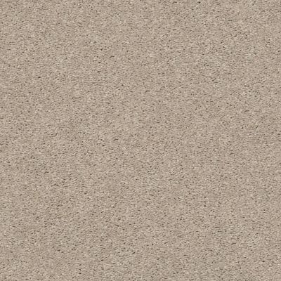 Shaw Floors Value Collections Cabana Life Solid Net Shifting Sand 00105_5E003