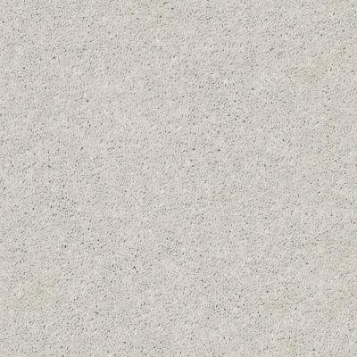 Shaw Floors Value Collections Cabana Life Solid Net Ice 00520_5E003