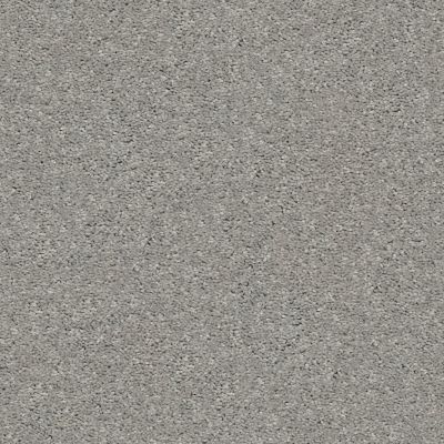 Shaw Floors Value Collections Cabana Life Solid Net Dolphin 00521_5E003