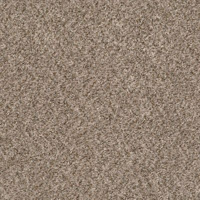 Shaw Floors Value Collections Cabana Life (b) Net Mesa 00152_5E004
