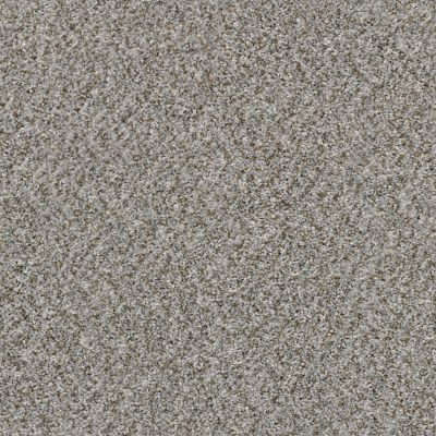 Shaw Floors Value Collections Cabana Life (b) Net Granite 00551_5E004