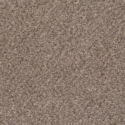 Shaw Floors Value Collections Cabana Life (b) Net Brown Reed 00751_5E004