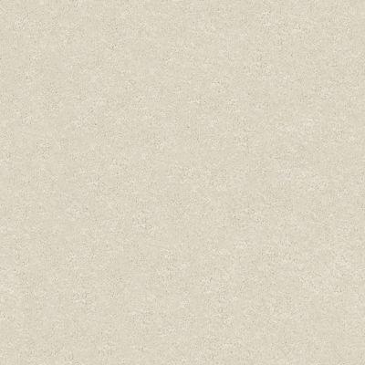 Shaw Floors Take The Floor Texture I Modern Loft 00154_5E005