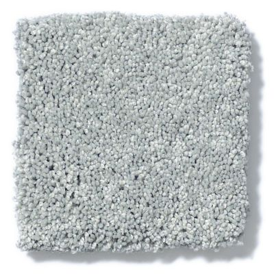 Shaw Floors Foundations Take The Floor Texture I Pewter 00551_5E005