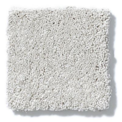 Shaw Floors Foundations Take The Floor Texture II Pebble Path 00135_5E006