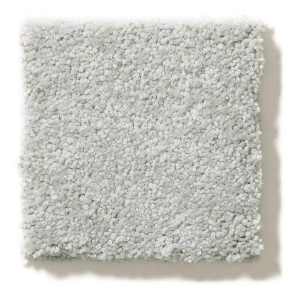Shaw Floors Foundations Take The Floor Texture II Gray Owl 00538_5E006
