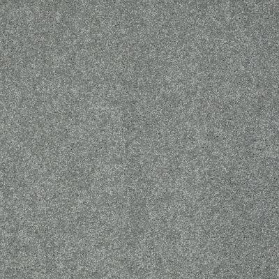 Shaw Floors Take The Floor Texture II Reflection 00541_5E006