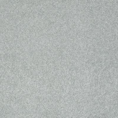 Shaw Floors Take The Floor Texture II Pewter 00551_5E006