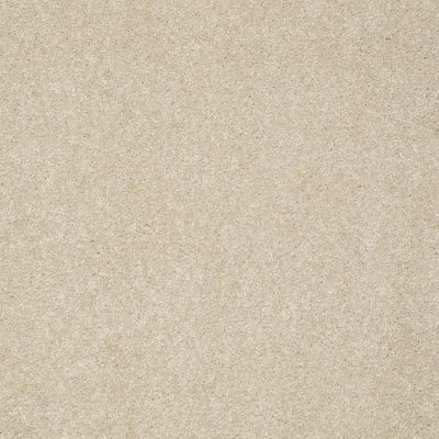 Shaw Floors Take The Floor Texture II Suitable 00712_5E006