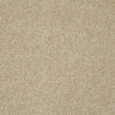 Shaw Floors Foundations Take The Floor Texture Blue Hazelnut 00750_5E007