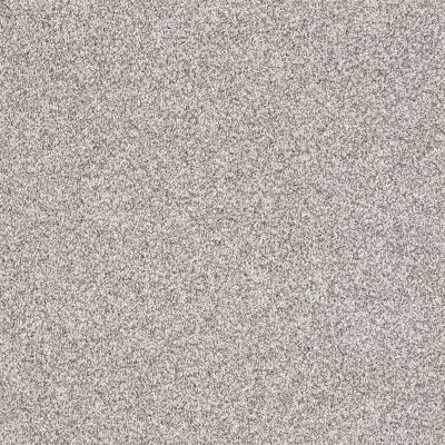 Shaw Floors Take The Floor Tonal I Silver Charm 00501_5E008