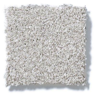 Shaw Floors Foundations Take The Floor Tonal I Mystic 00560_5E008