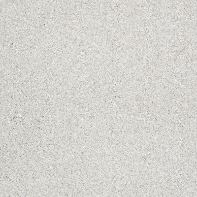 Shaw Floors Take The Floor Tonal II Orion 00160_5E009