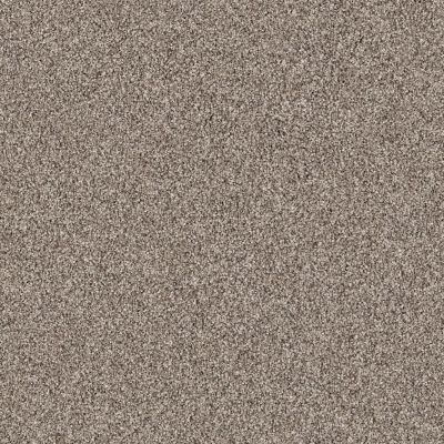 Shaw Floors Take The Floor Tonal II Triumph 00164_5E009