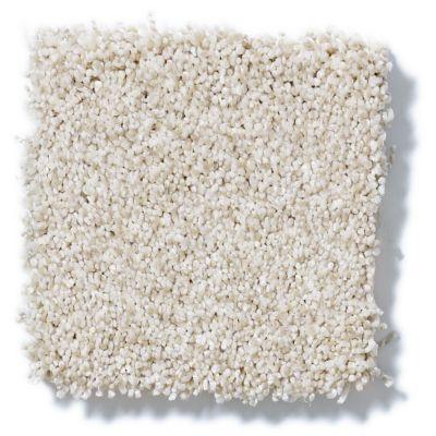 Shaw Floors Take The Floor Tonal II Cashmere 00260_5E009