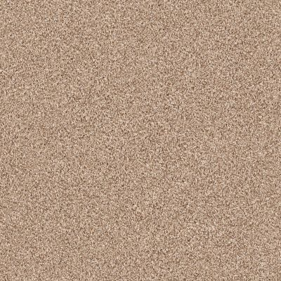 Shaw Floors Foundations Take The Floor Tonal Blue Sienna 00761_5E010