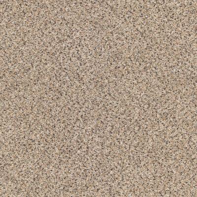 Shaw Floors Take The Floor Accent II Desert Sunrise 00172_5E012