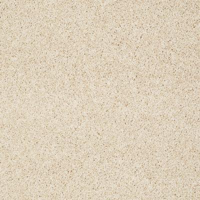 Shaw Floors Foundations Take The Floor Twist I Toasted 00121_5E014