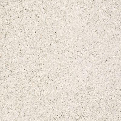 Shaw Floors Foundations Take The Floor Twist I Biscotti 00131_5E014