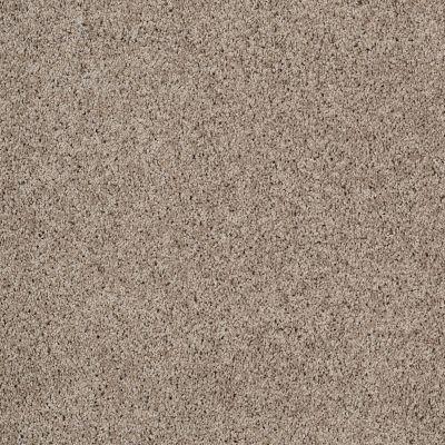 Shaw Floors Foundations Take The Floor Twist II Threshold 00732_5E015