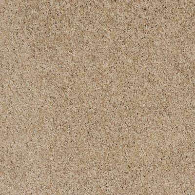Shaw Floors Foundations Take The Floor Twist II Hazelnut 00750_5E015