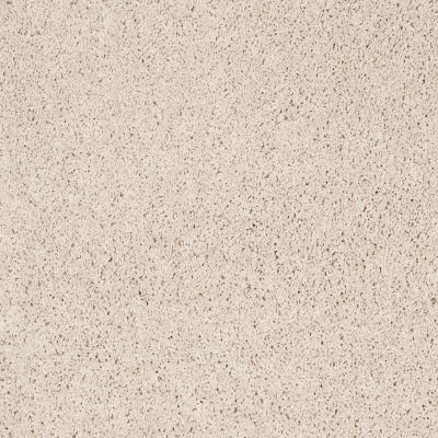 Shaw Floors Foundations Take The Floor Twist Blue Biscotti 00131_5E016